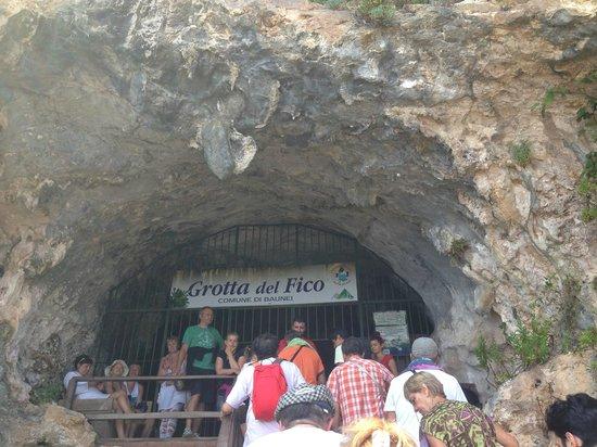 Grotta del Fico: ingresso alla grotta