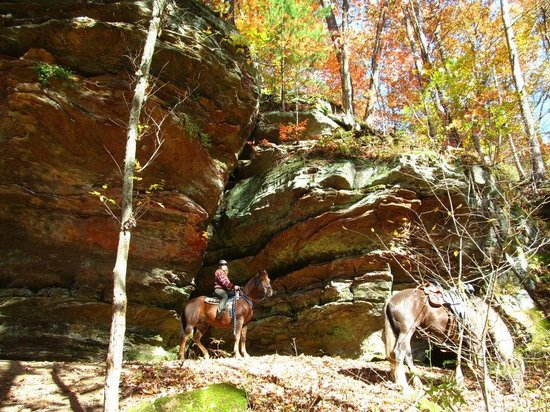 Blue Moon Acres: Hocking Hills in the fall