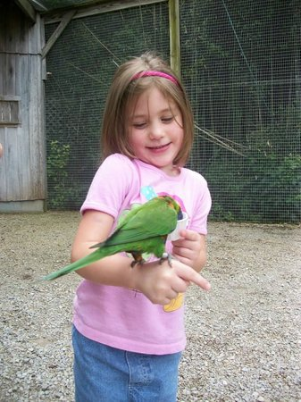 Kentucky Down Under Adventure Zoo: Feeding the birds