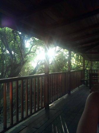 Hotel Las Tortugas -Dining: Vista de la terraza