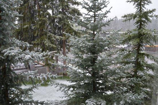 Rundlestone Lodge: Neve no início de julho