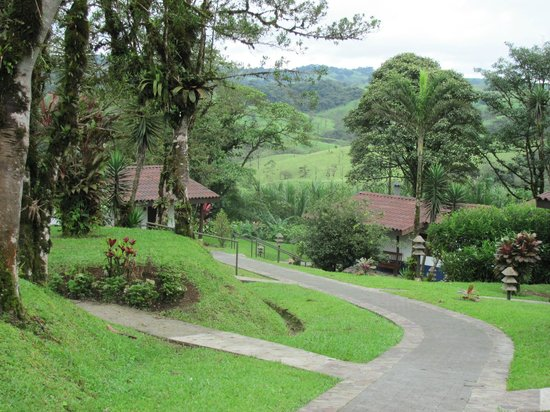 Villa Blanca Cloud Forest Hotel and Nature Reserve: casitas