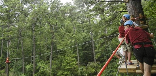 Lake Course Zip Line, #1 - Picture of Callaway Gardens, Pine ...