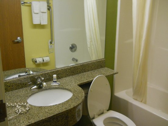 Microtel Inn & Suites by Wyndham Opelika: Bathroom