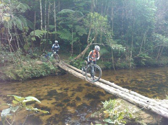 Via Pedal Bike Tour: Parque do Desengano