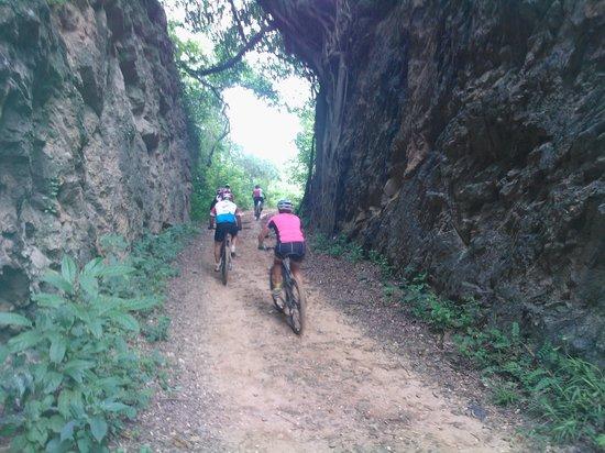 Via Pedal Bike Tour: Estrada do 17/Linha do Trem