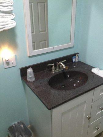 Pontiac Lodge: Simple bathroom