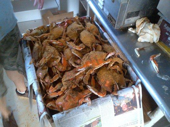 Daniels' Whalebone Seafood Market : Fresh steamed blue crabs from Whalebone Seafood