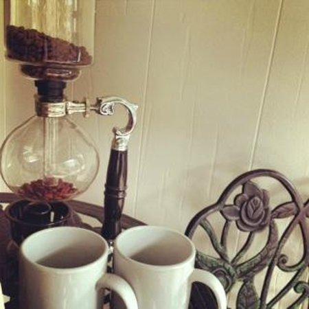 Cafe Stream: Siphon