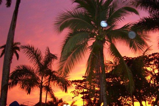 Paradise Inn: Die Hotelanlage ist ruhig und mit Geschmakt eingerichtet.