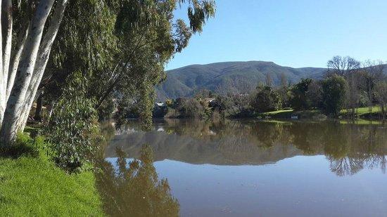 Bonnievale River Lodge: The River