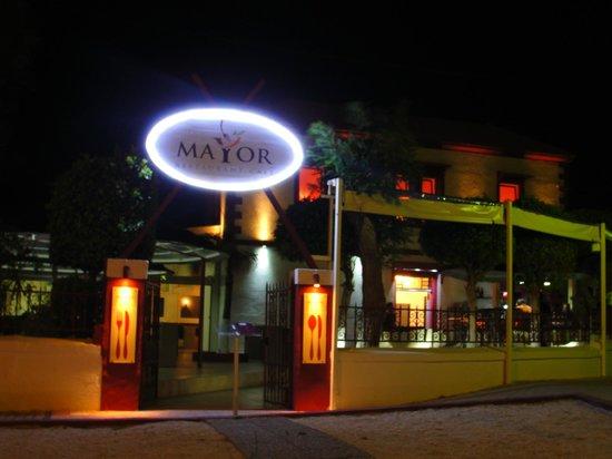 MAYOR BY NIGHT