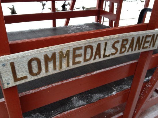 Lommedalen, Norvège : getlstd_property_photo