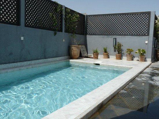 Riad 64: La piscine