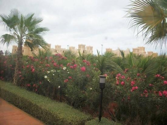 Landscape - Hotel Riu Touareg Photo