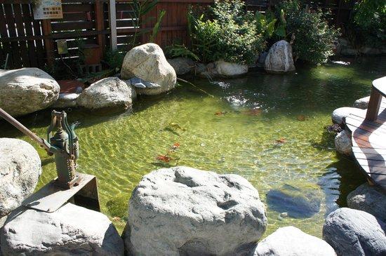 Cypress House: Pond beside entrance