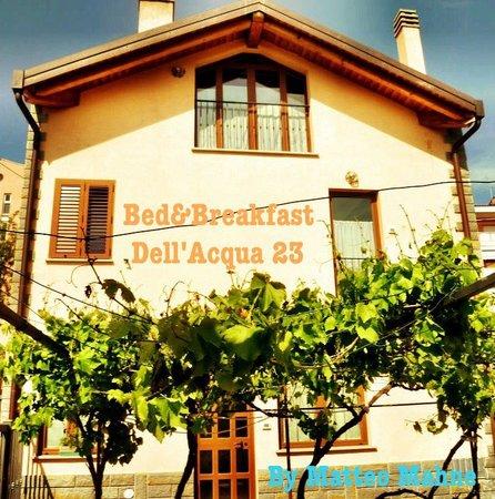Dell'Acqua 23