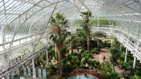 People's Palace and Winter Gardens: The winter gardens