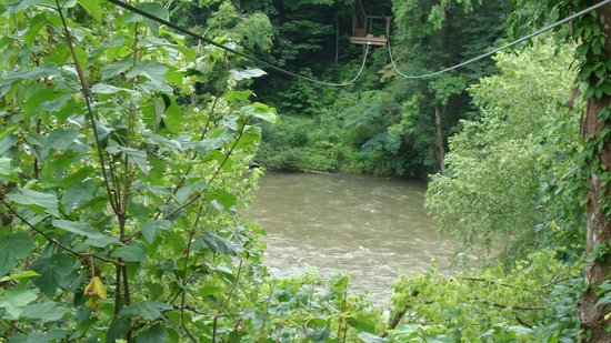 Pigeon River Canopy Tours : Zip over the river