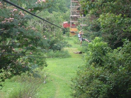 Pigeon River Canopy Tours : Long Zip