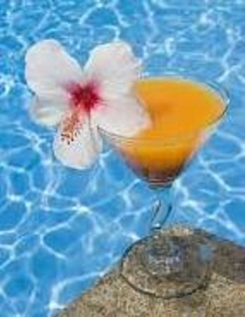 Island Sands Inn: Pool Side Cocktails