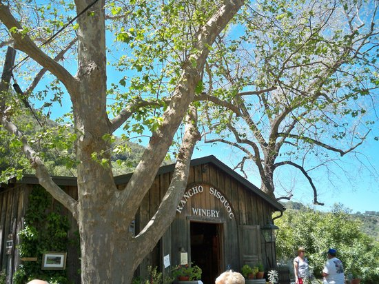 Rancho Sisquoc Winery : Great tasting room