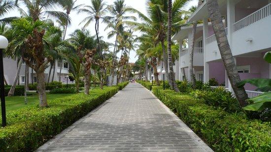Hotel Riu Bambu: Caminho do quarto para o lobby e restaurantes