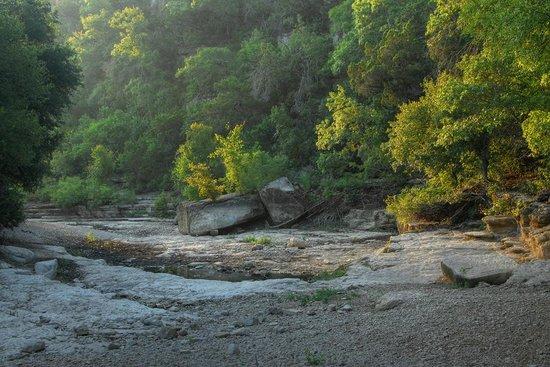 Barton Creek Greenbelt: Summer