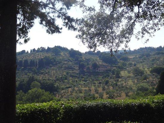 Villa Di Campolungo Agriturismo : view from the entrance