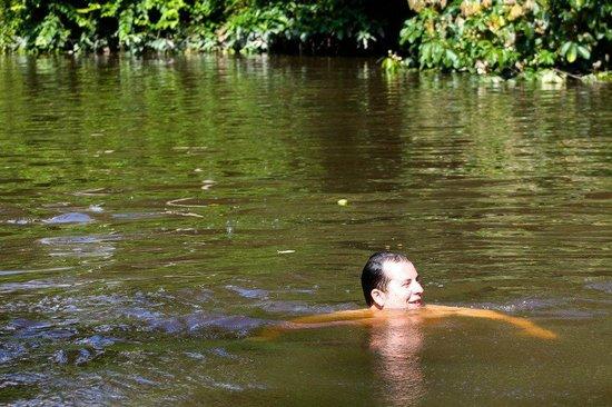 Manatee Amazon Explorer: The piranhas were scared of me!