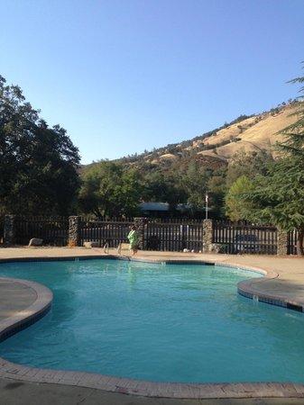 American River Resort: Pool