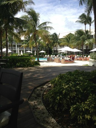 Hilton Fort Lauderdale Marina: pool area