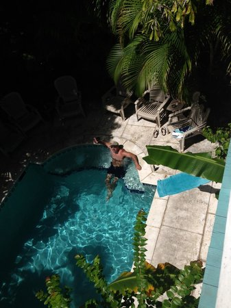 Coco Plum Inn Bed and Breakfast : Great for cooling off after walking the streets of Key West