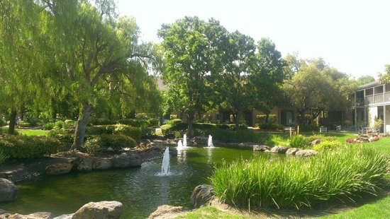 Four Points by Sheraton Pleasanton: Pond at Four Points Sheraton Pleasanton