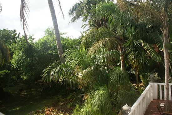 St. Lucia Wetlands Guesthouse: The beautiful gardens are beyond enjoyable!