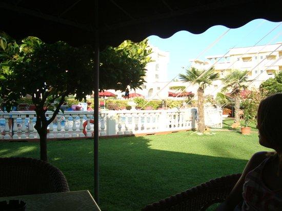 Hotel Apollo: Pool