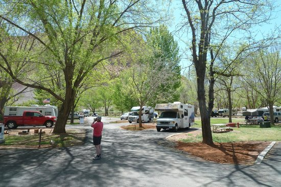 Fruita Campground : Campsite in May