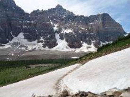 Great Divide Nature Interpretation: An avalanche path that we had to hike over.  Awesome!!