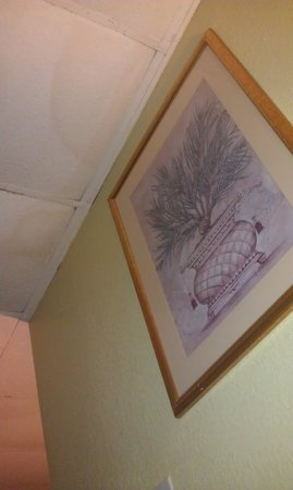 Red Carpet Inn: Stained and saggy ceiling