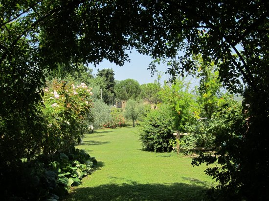 Podere San Luigi: Beautiful garden