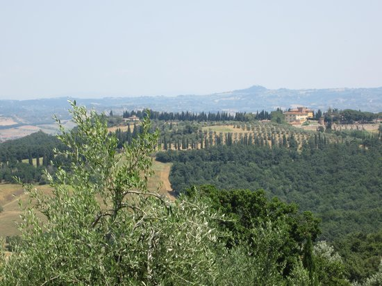 Podere San Luigi: Stunning view from the balcony