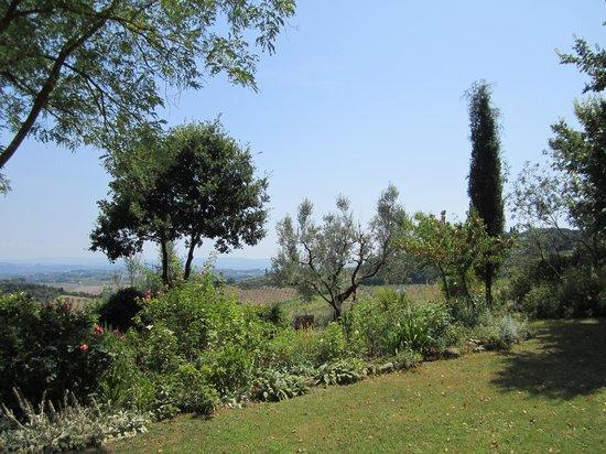 Podere San Luigi: Garden