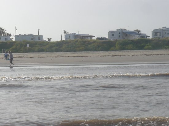 Dellanera RV Park : View of the campground from the beach