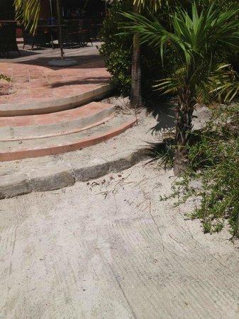 Matachica Resort & Spa: uneven steps