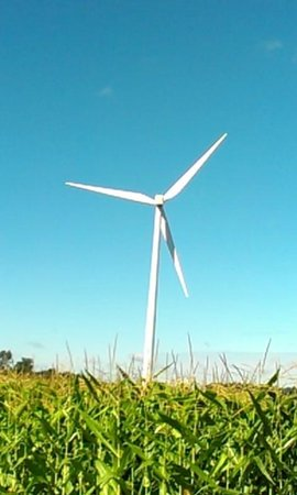 Bowling Green Wind Farm