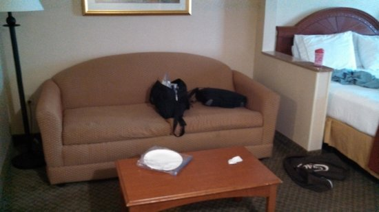 Holiday Inn Express Hotel & Suites Erie (Summit Township) : sofa bed