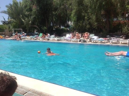 Panormos Hotel: pool
