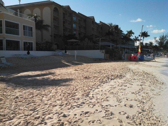 Comfort Suites Seven Mile Beach: 7MB