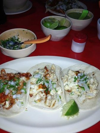 Mister Taco: wow yummy!!