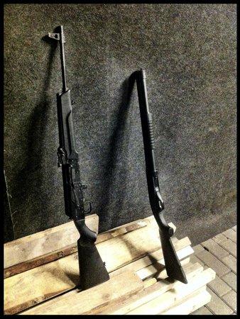 Walters Sautuve: guns